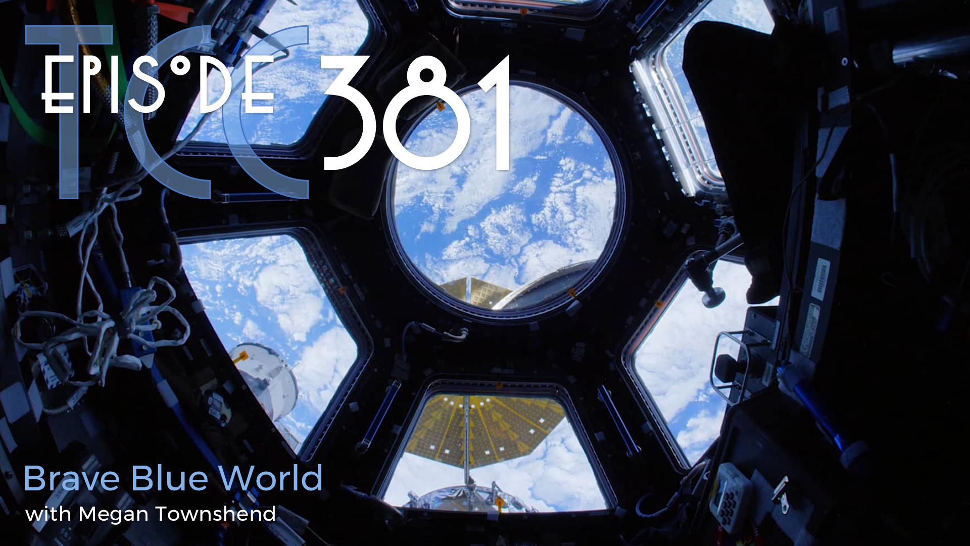 The Citadel Cafe 381: Brave Blue World